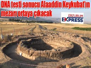 DNA testi sonucu Alaaddin Keykubat'ın mezarı ortaya çıkacak