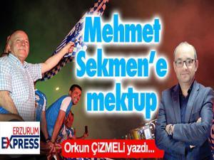 Mehmet Sekmen'e mektubumdur