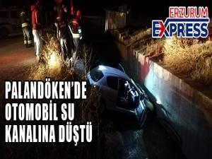 Otomobil su kanalına düştü: 2 yaralı