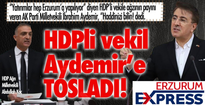 HDP'li vekil, İbrahim Aydemir'e tosladı!