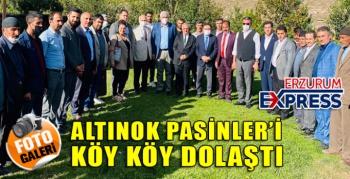 ALTINOK PASİNLER'İ KÖY KÖY GEZDİ.