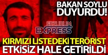 Bakan Soylu: 'Kırmızı listedeki bir terörist etkisiz hale getirildi'