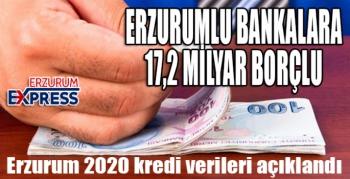 Erzurum2020 kredi verileri açıklandı