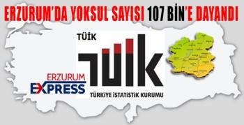 ErzurumBölgesi gelir koşulları açıklandı