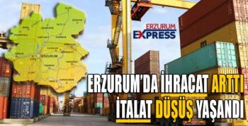 Erzurum'da ihracat arttı, ithalat düştü
