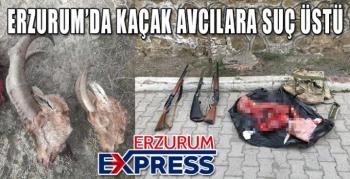 Erzurum'da kaçak dağ keçisi avı yapan şahıslar suçüstü yakalandı