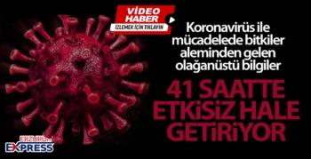 Korana virüsüne karşı kritik çözüm: 41 saatte etkisiz hale getiriyor