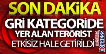 MİT'ten eylem hazırlığındaki PKK'lıya operasyon