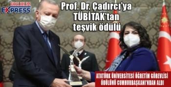 Prof. Dr. Çadırcı'ya TÜBİTAK'tan teşvik ödülü