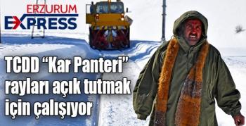 "TCDD ""Kar Panteri"" raylarda"