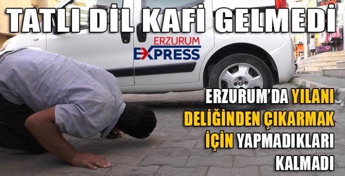TATLI DİL KAFİ GELMEDİ.