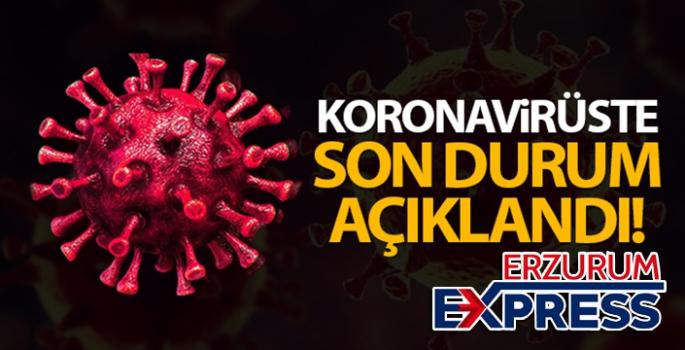 Türkiye'de son 24 saatte 9.193 koronavirüs vakası tespit edildi