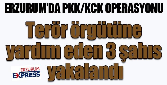 Erzurum'da terör örgütüne yardım eden 3 şahıs yakalandı