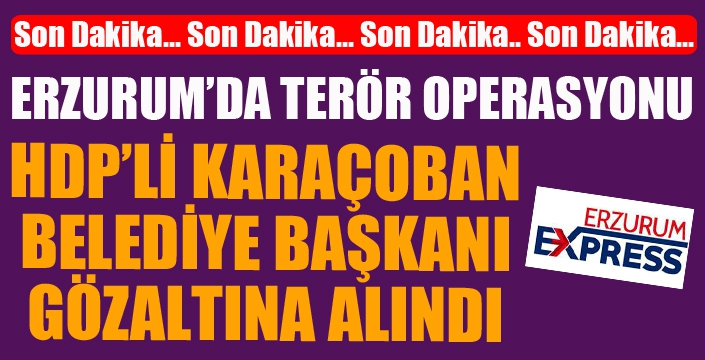 HDP'li Karaçoban Belediye Başkanı ve şoförü gözaltına alındı...