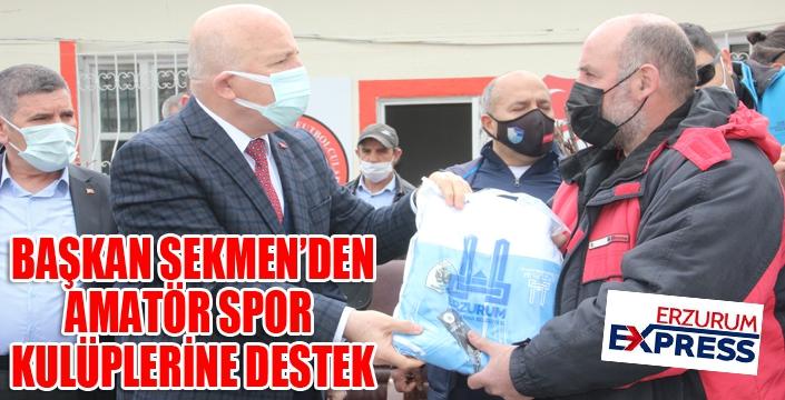Mehmet Sekmen: